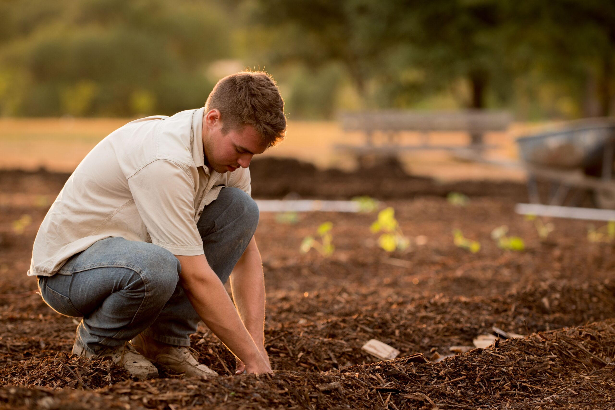 what are the benefits of composting